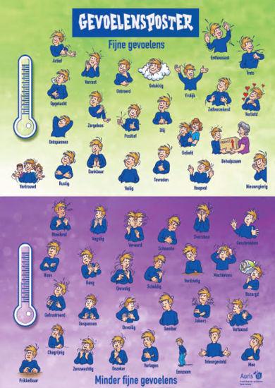 Afbeelding van Emotie-educatie, gevoelsposter en -kaartjes - ouders